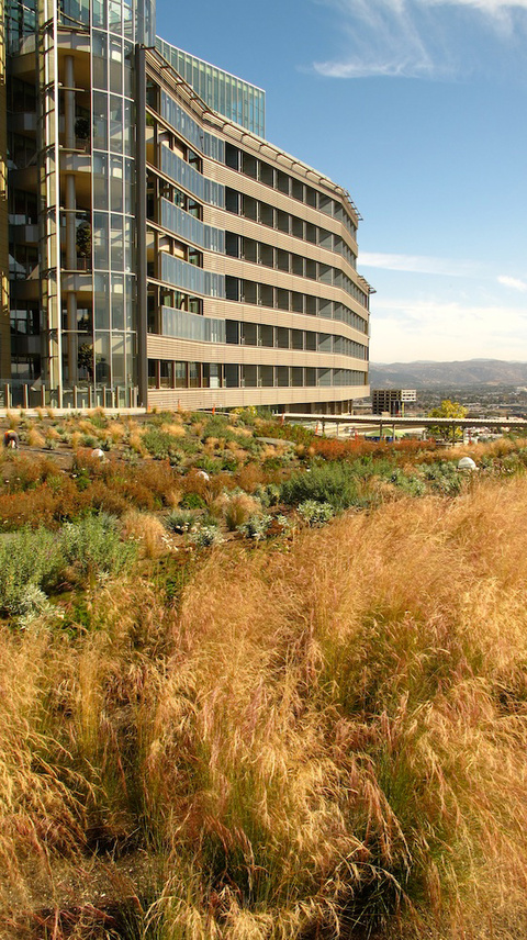 Palomar West Hospital by Marie Goulet.