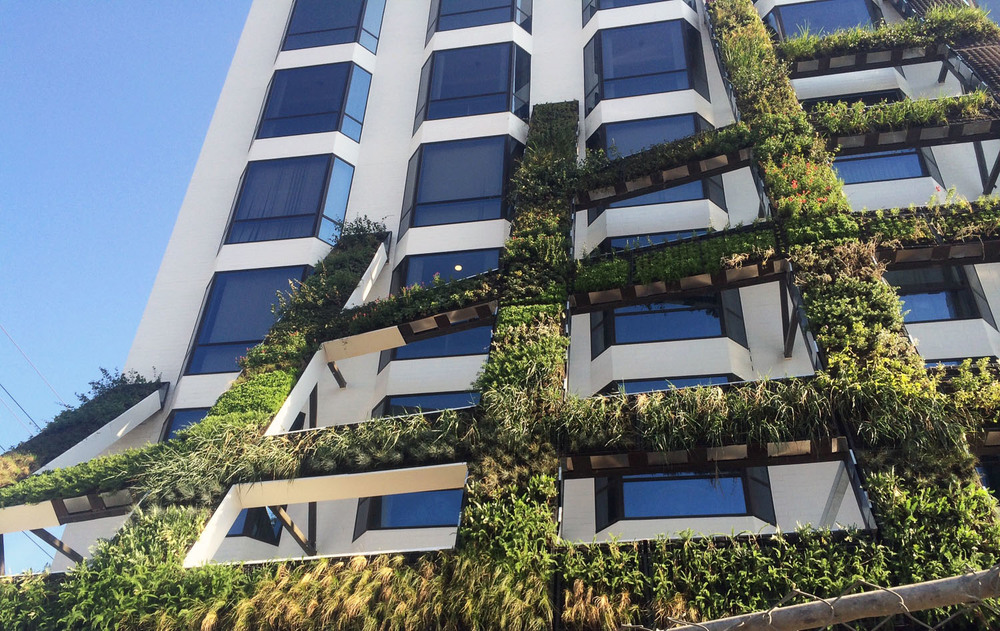 8800 WEST SUNSET BOULEVARD LIVING WALL