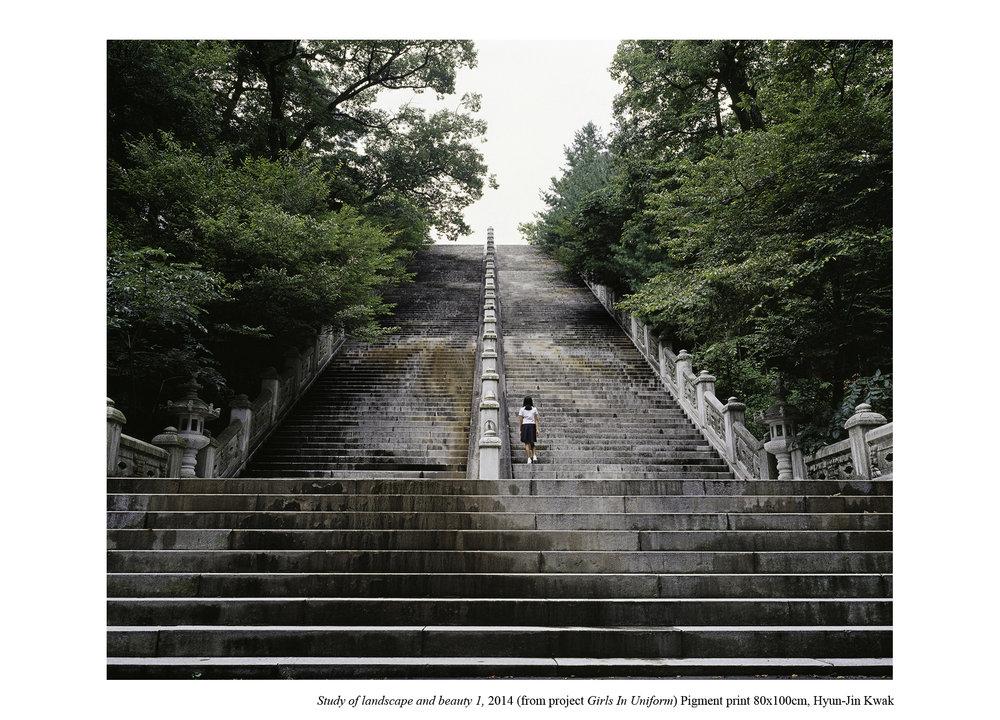 Hyun-Jin Kwak,  Study of Landscape and Beauty 1, 2014, 80(H)x100(W)cm inkjet print o ignored