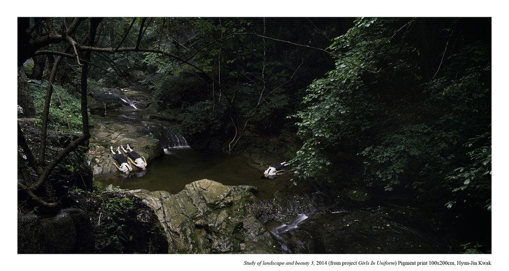 Hyun-Jin Kwak,  Study of Landscape and Beauty 3, 2014,100(H)x200(W)cm inkjet print