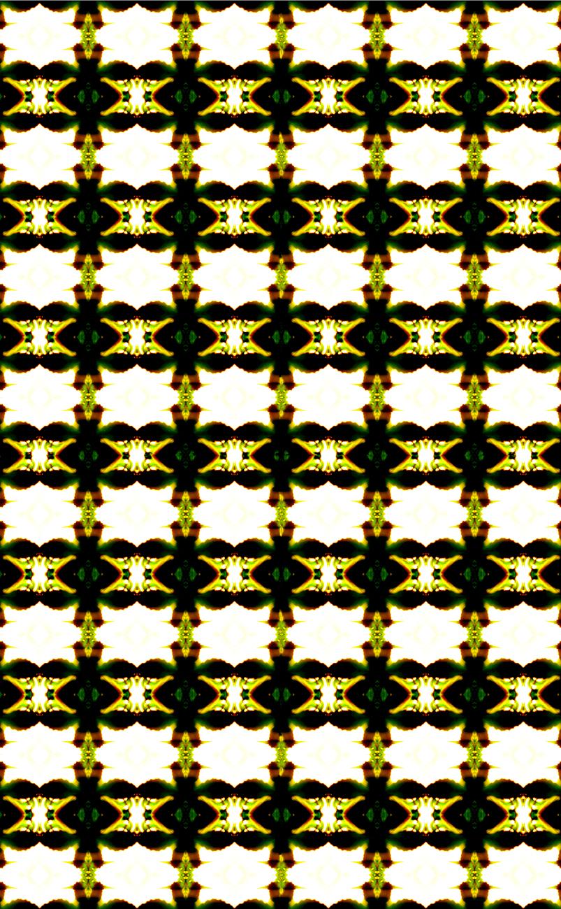 12 fractals of.jpg