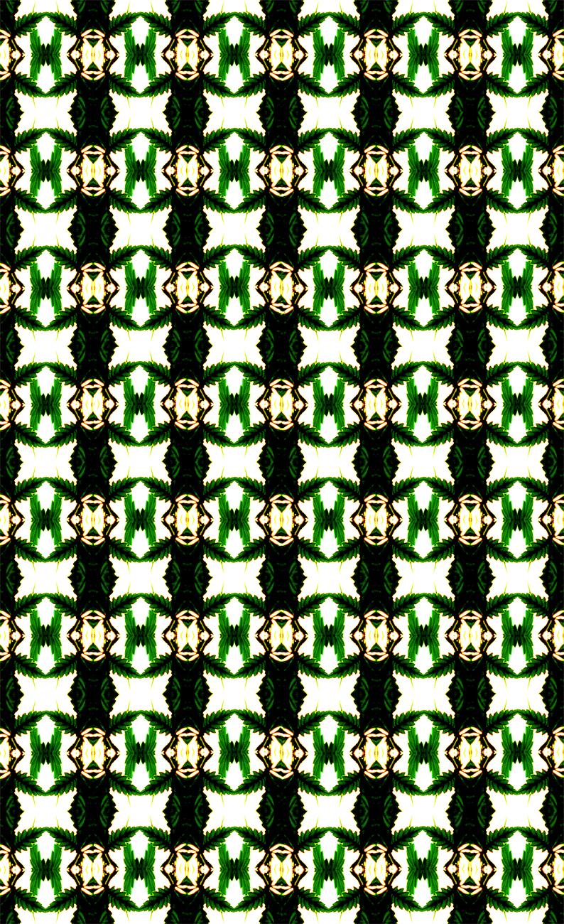 12 fraktal.jpg