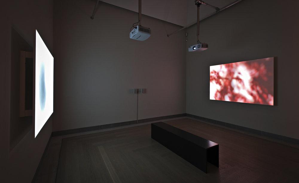 Moderna Museet installationsvy.jpg