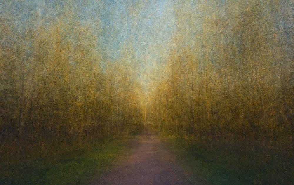 Path 16
