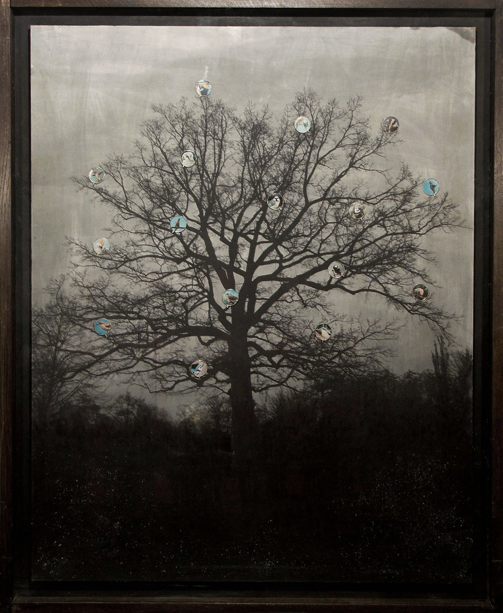 5.The_Tree_110x140cm.jpg