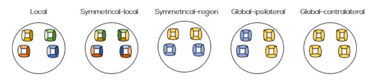 Figure 3: 16-channel optode template set-up for local, symmetrical-local, symmetrical-region, global-ipsilateral and global-contralateral use of short separation channels. Each color represent a short separation channel for every category of long channels.