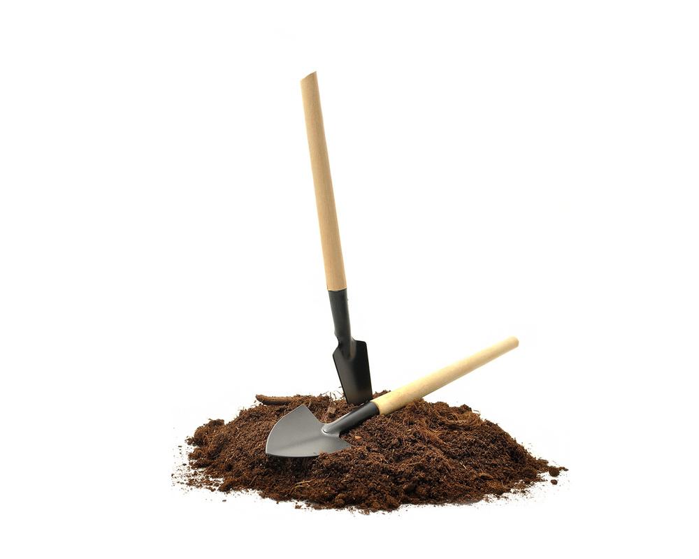 charles-hoare-soil.jpg