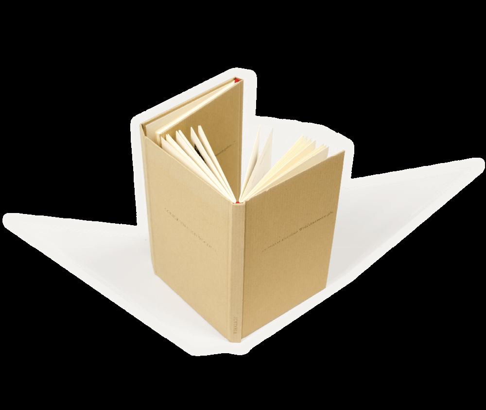 gökbük-zweibuch-square.png