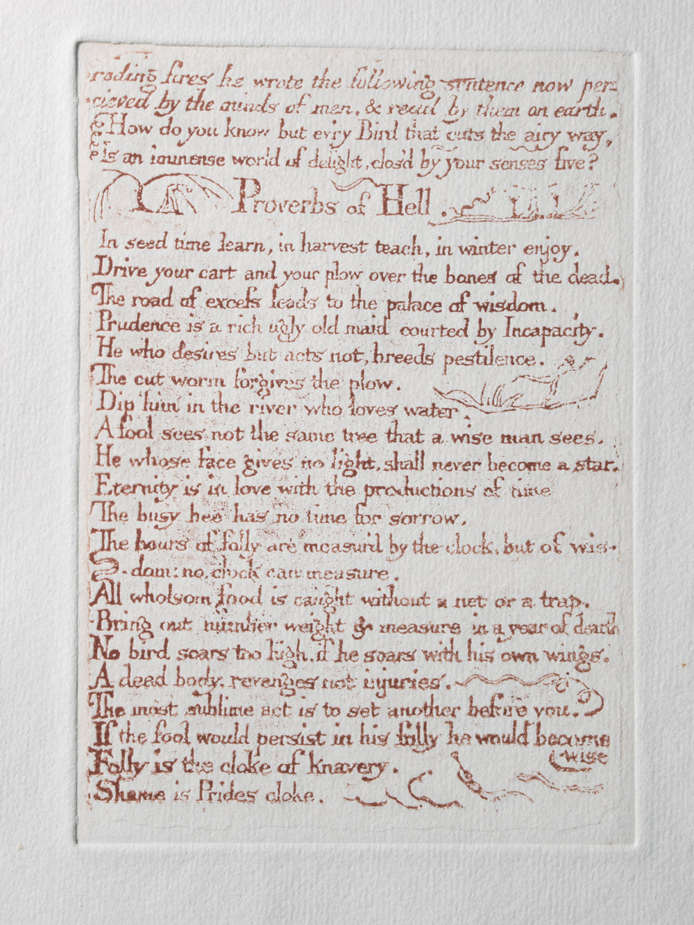 Copy of Proverbs of Hell