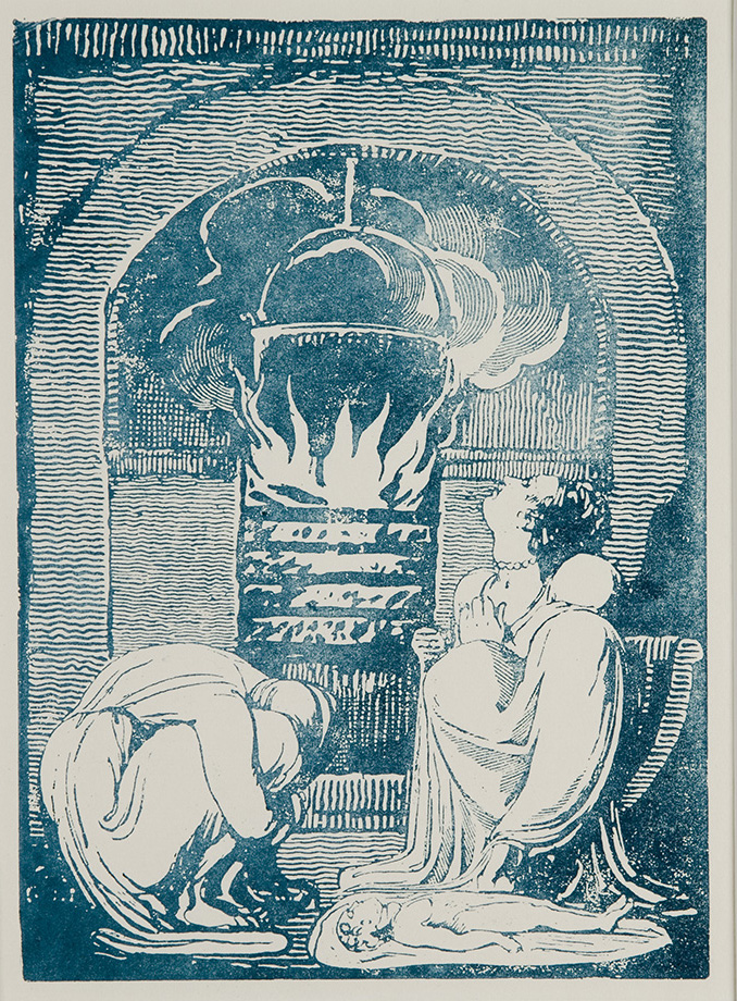 Copy of Plate 8 printed in blue ink