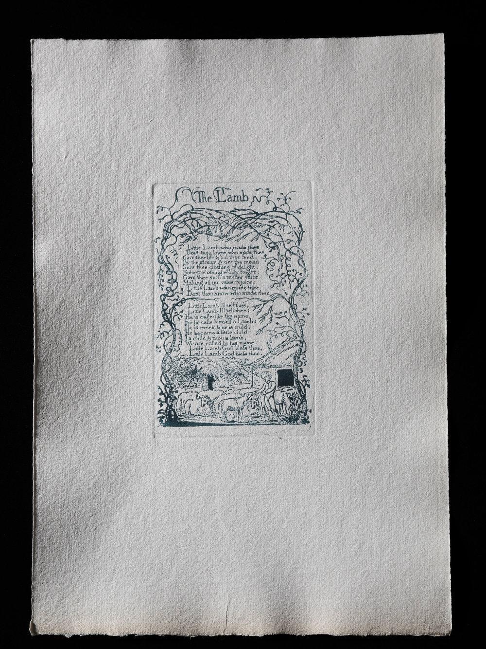 7. The Lamb, 123 x 78 mm