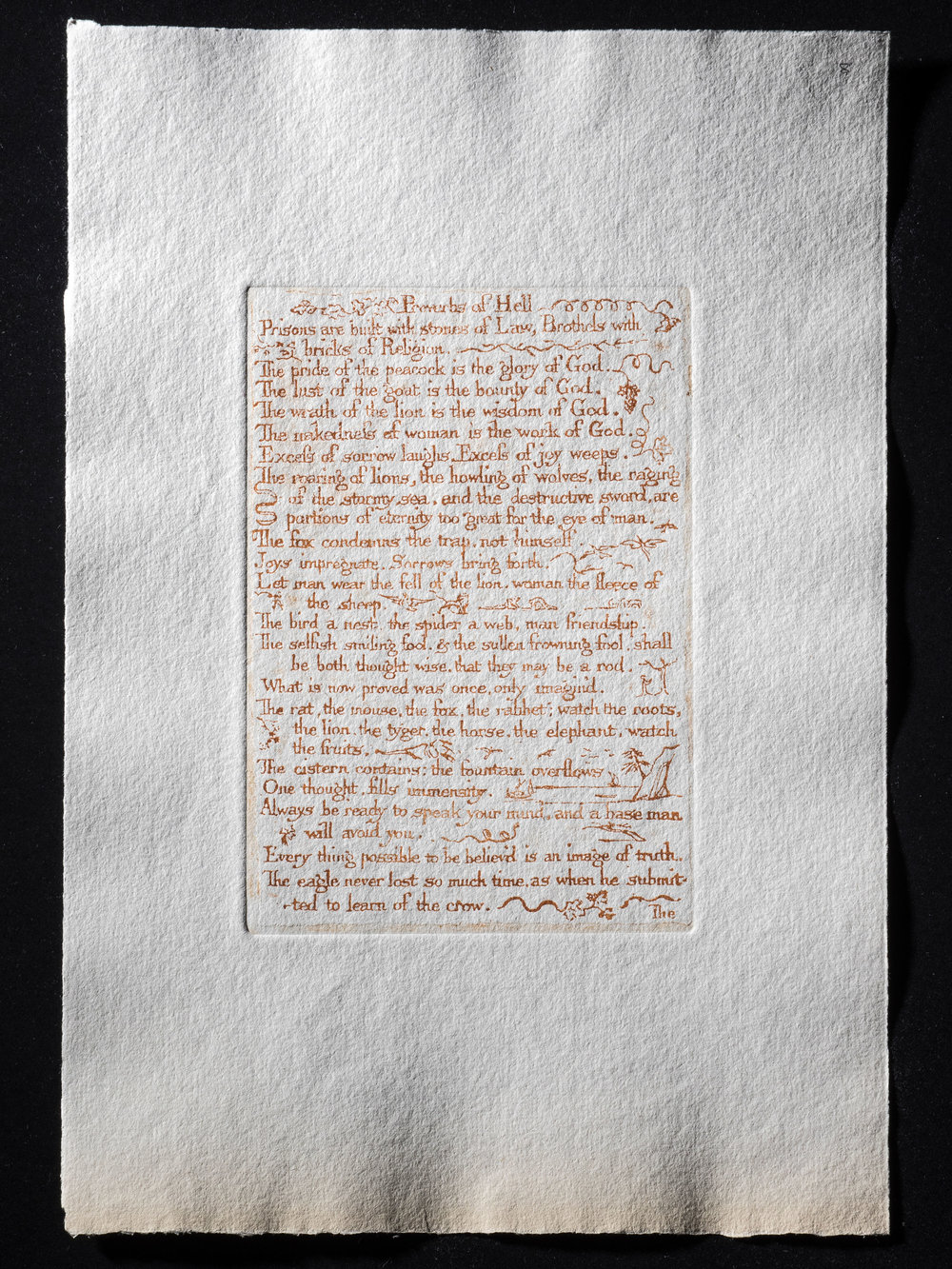 8. Proverbs of Hell, 156 x 107 mm