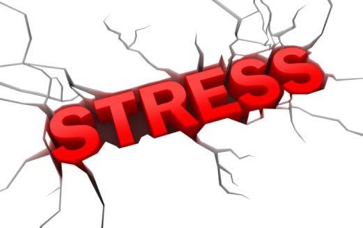 stress_Page_1.jpg