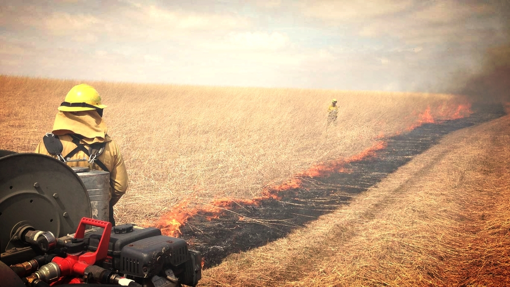 Prescribed Burning    Learn More