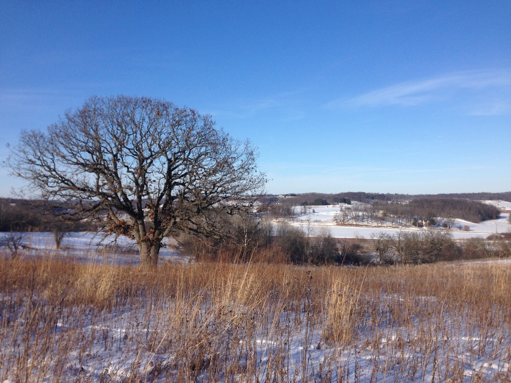 Hidden in this photo is our headquarters, nestled in the hills, prairies, savanna, and woodlands of Springdale Township, Dane County,  Wisconsin, about 20 miles from Madison.
