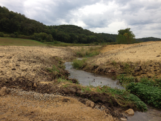 Native seeding as part of a streambank restoration near Spring Green, Wisconsin
