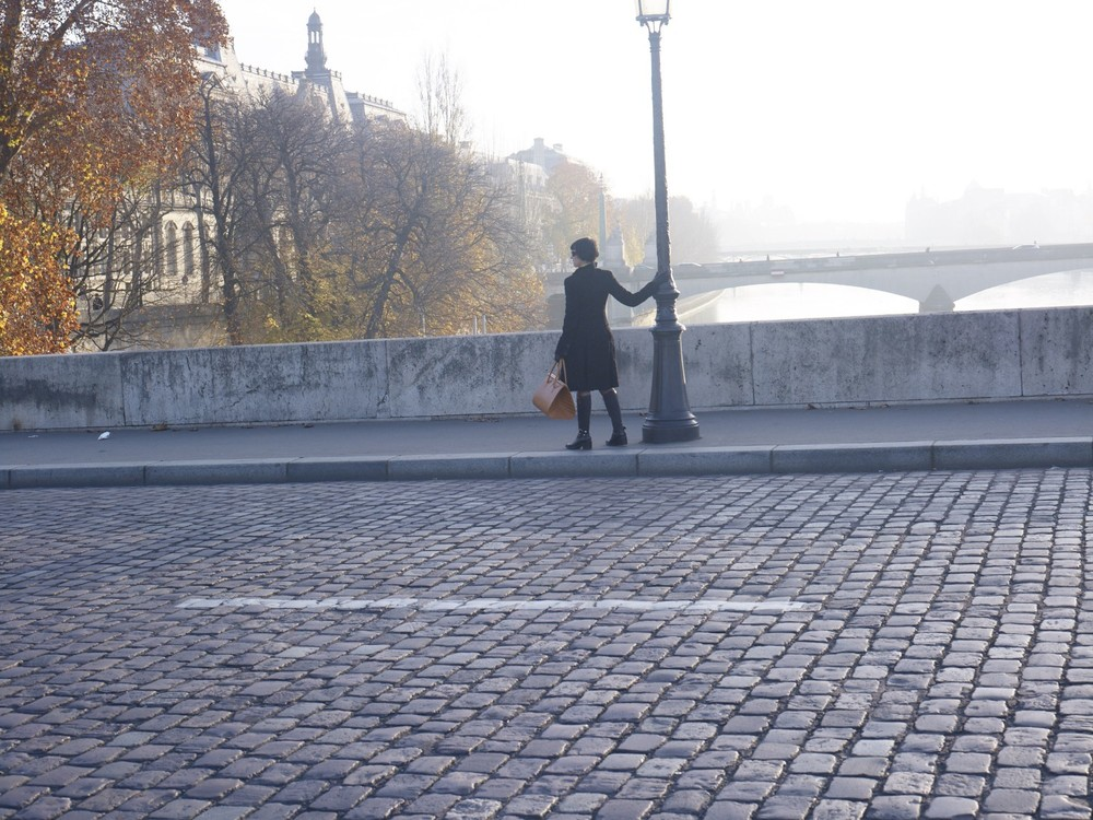 The Peau Chagrin bag, The bridges over the Seine, Paris