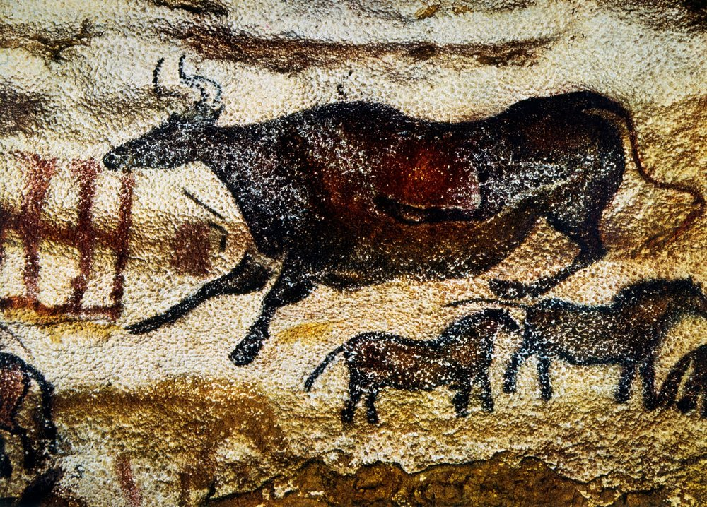 Cave Painting of Cow & Horses, Lascaux, France            Glasshouse Images / Alamy Stock Photo