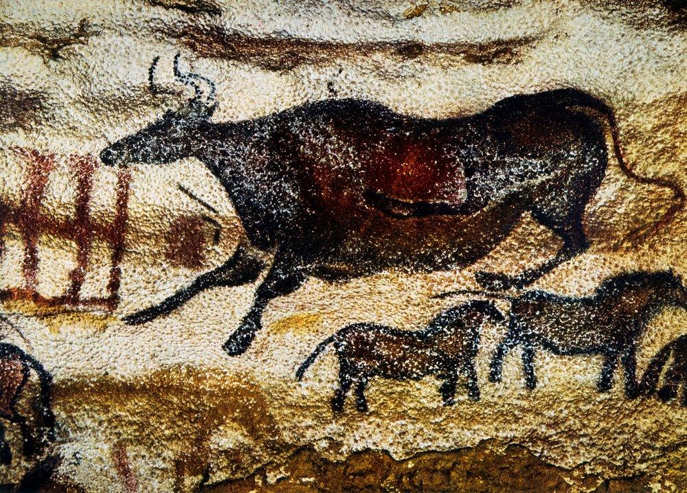 Cave Painting of Cow & Horses, Lascaux, France    Glasshouse Images / Alamy Stock Photo