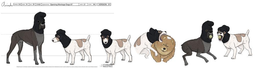 Animals Burglar Dogs_1.jpg