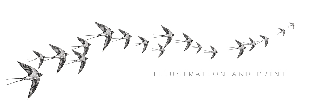 website banner-SWALLOWS.jpg