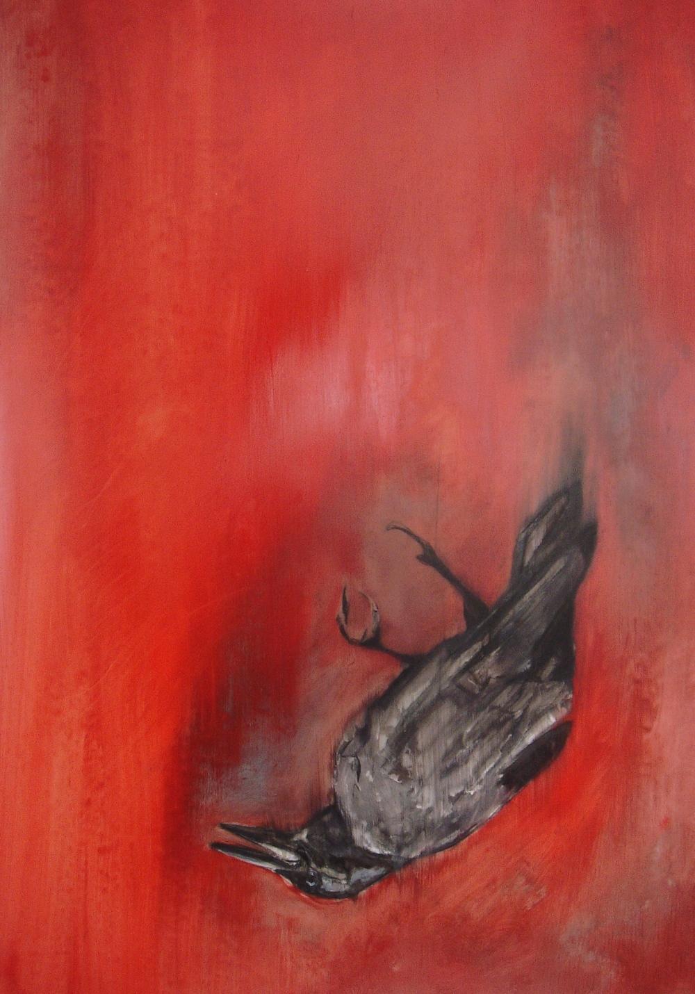 falling crow #1.JPG