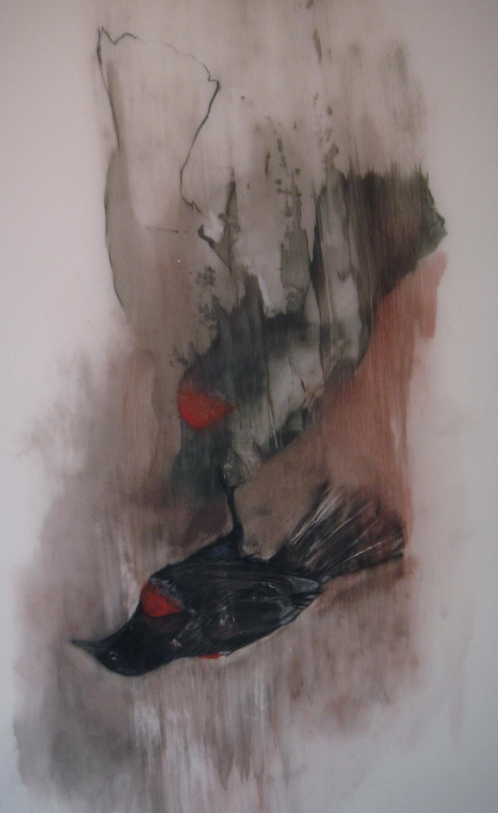 red wing.JPG