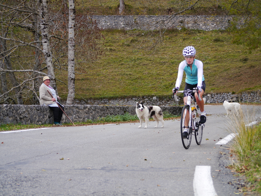 She has been watching cyclists go past for a long time on the Col d'Aspin...