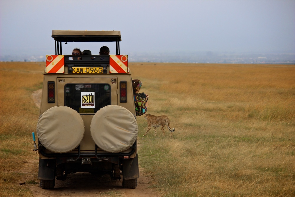 safari4.jpeg