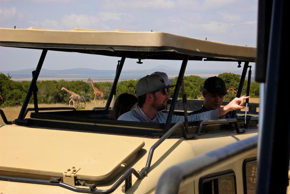 safari3.jpeg