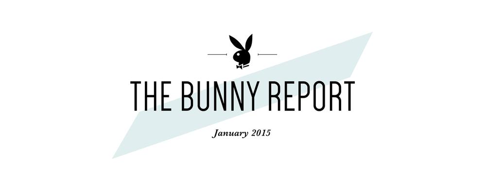 BunnyReportLogo.jpg