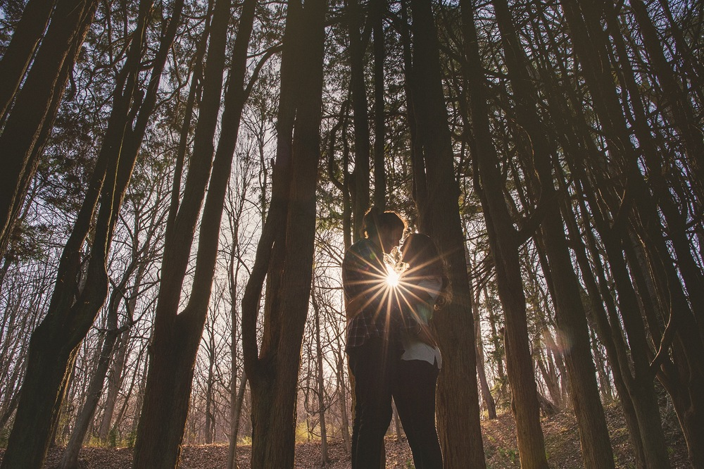 05-sunflare.jpg