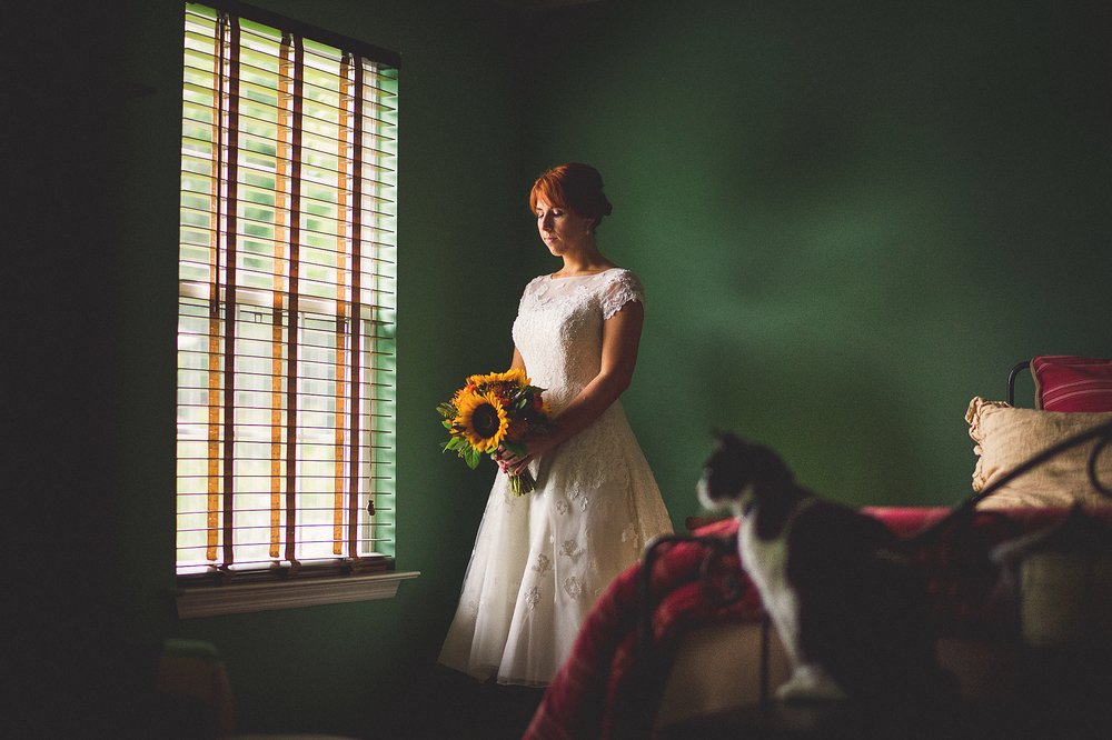 01-bride-and-cat-photos.jpg