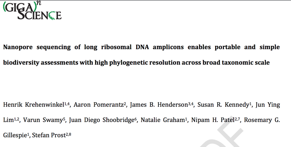 Download:    Nanopore sequencing of long ribosomal DNA amplicons enables portable and simple biodiversity assessments with high phylogenetic resolution across broad taxonomic scale