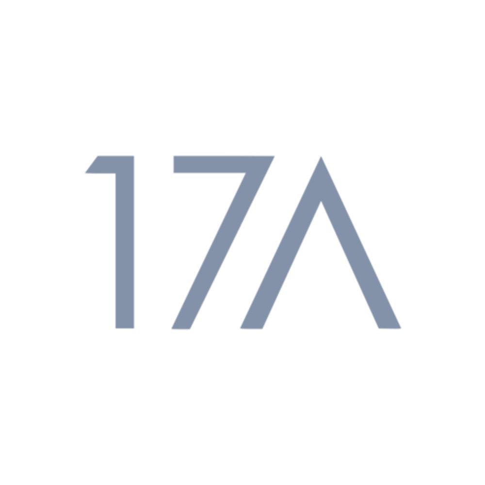 17a-blue.jpg