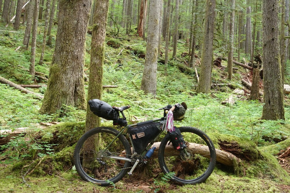 A fully rigid mountain bike with bikepacking bags.