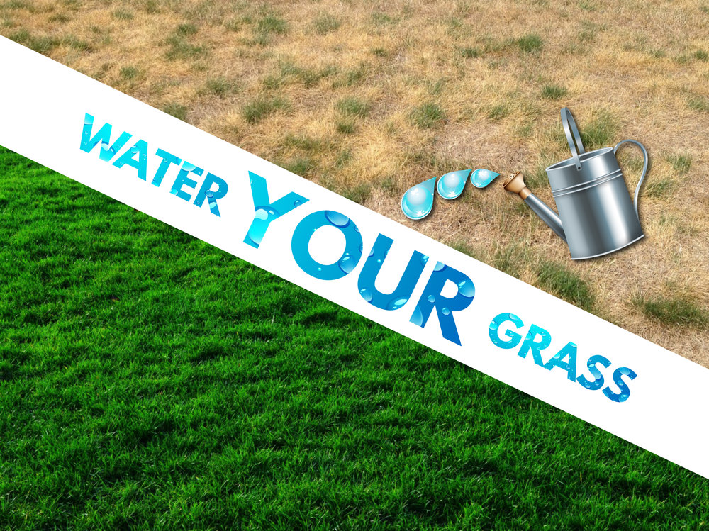 Water Your Grass Title ppt.jpg