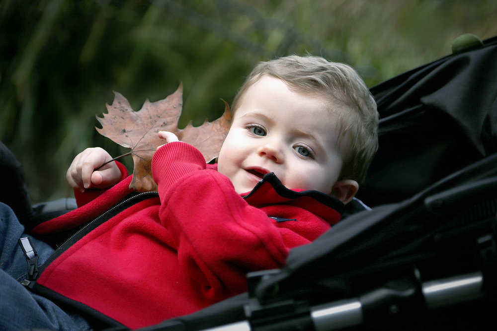 boys - michael pram leaf.jpg