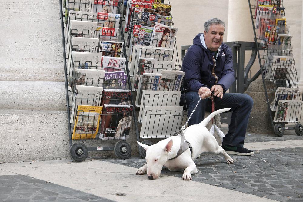 rome - dog.jpeg