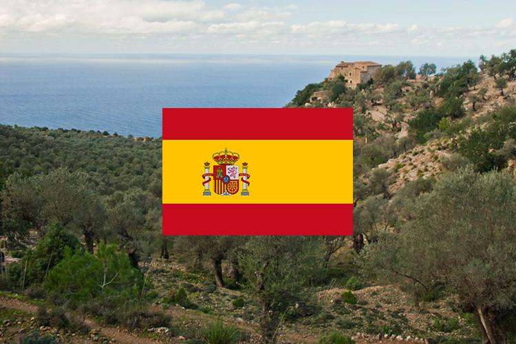 majorca_flag_112216.jpg