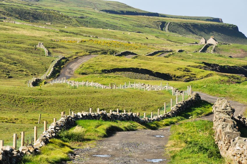 burren_country_road_ireland.jpg