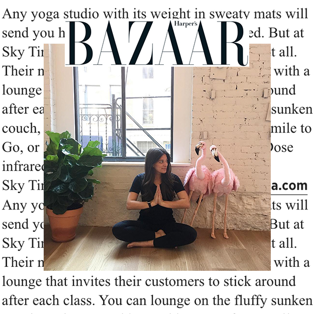"Harper's Bazaar, ""...at SKY TING, they don't want to send you home at all."""