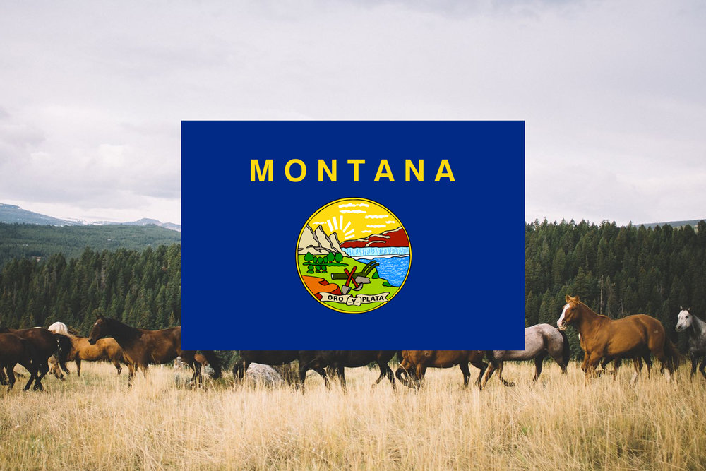 Montana Retreat.jpg