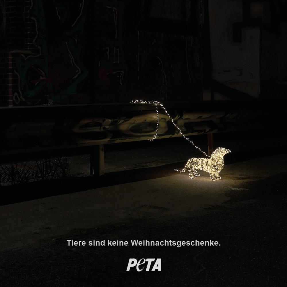 191217_PETA_Motiv21.jpg