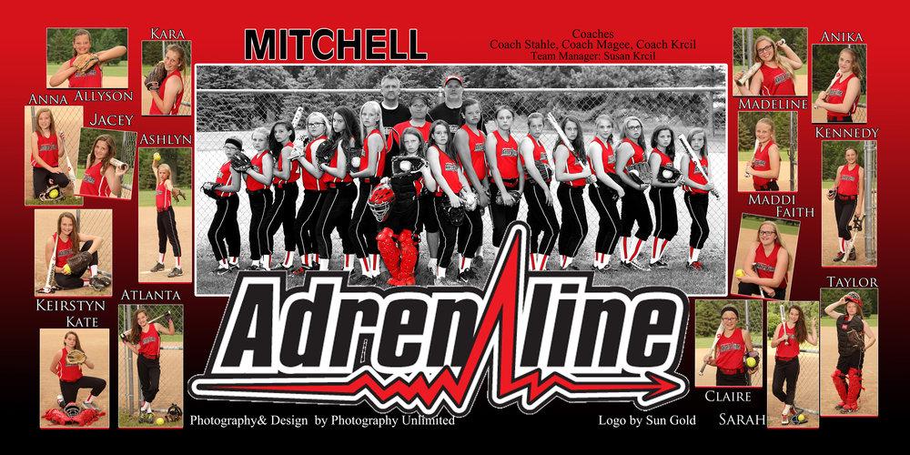 Adrenaline Poster 100 FB.jpg