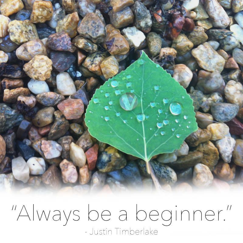 always be a beginner