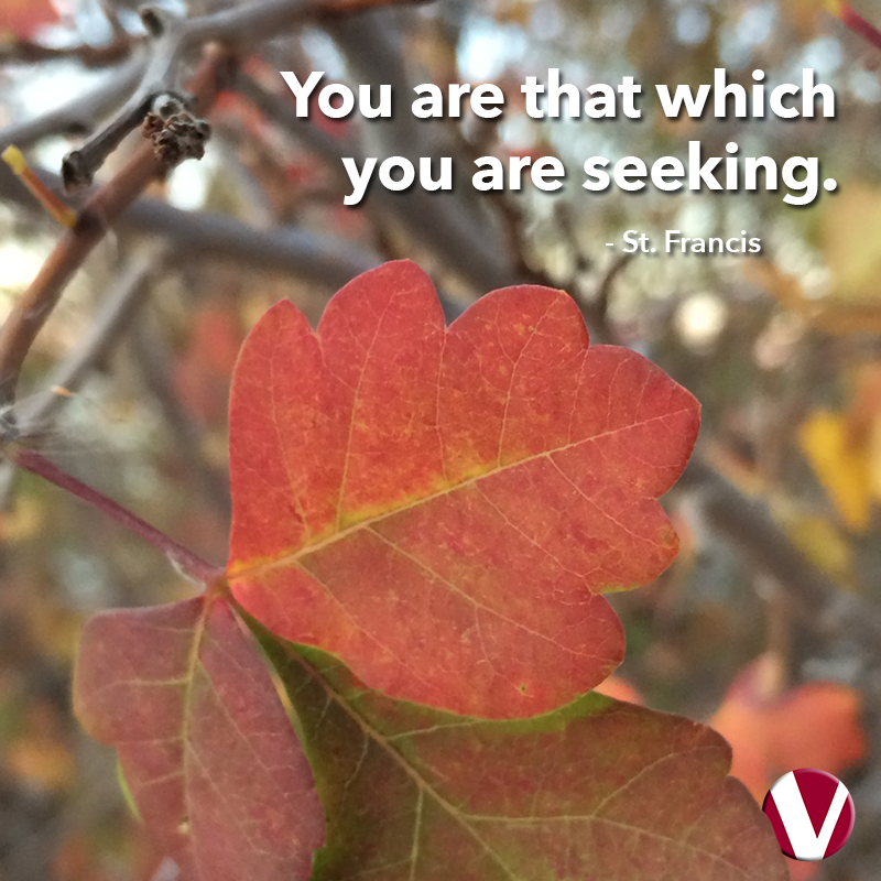 you are that which you are seeking
