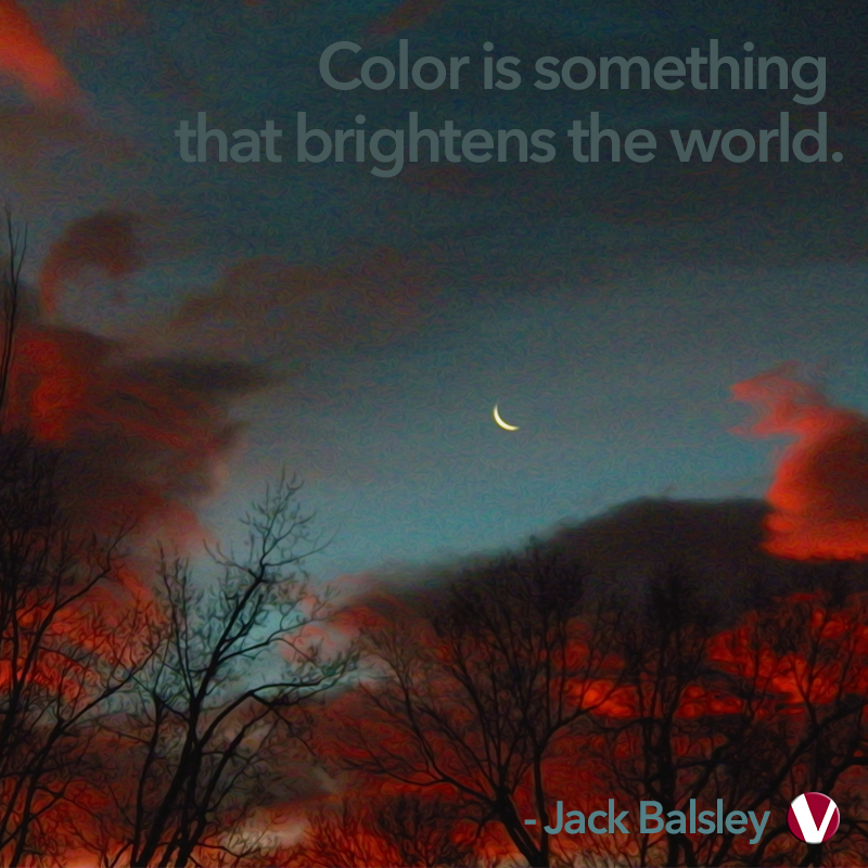 color is something that brightens the world