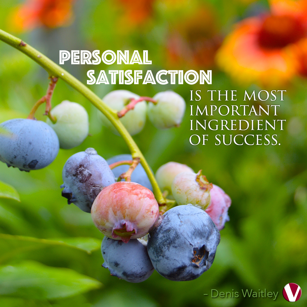 personal satisfaction is the most important ingredient for success