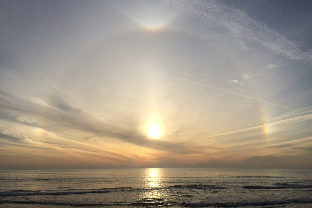 sun dog victory circles san diego